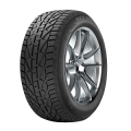 195/55 R15 85H TL WINTER TG
